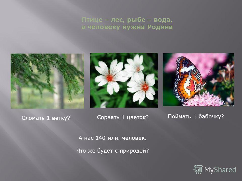 Сломать 1 ветку? Сорвать 1 цветок? Поймать 1 бабочку? А нас 140 млн. человек. Что же будет с природой? Птице – лес, рыбе – вода, а человеку нужна Родина