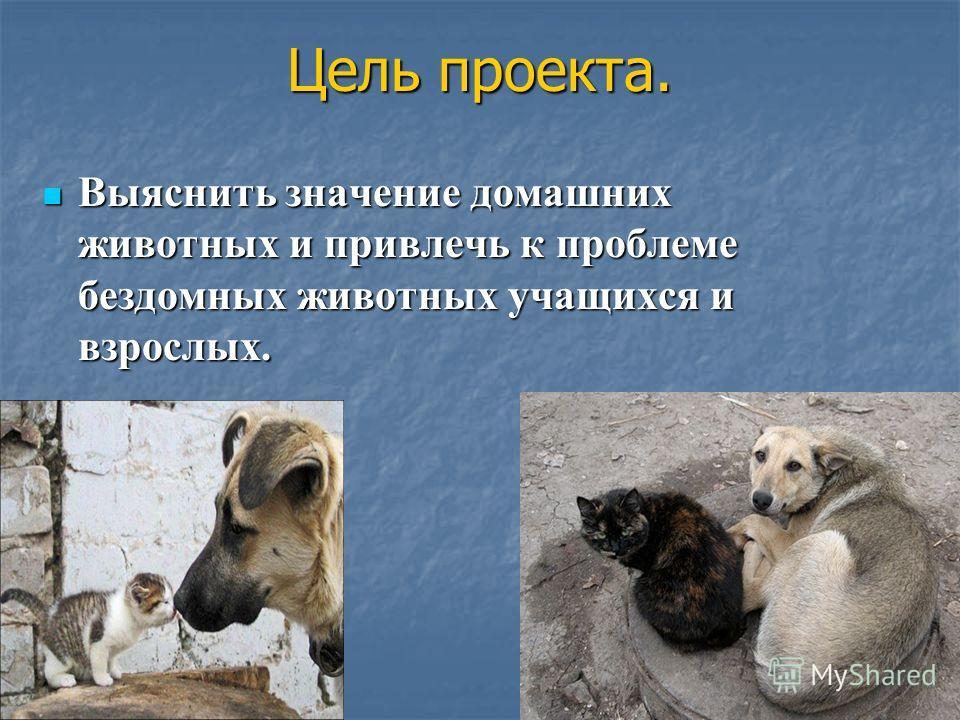 Выяснить значение домашних животных и привлечь к проблеме бездомных животных учащихся и взрослых. Выяснить значение домашних животных и привлечь к проблеме бездомных животных учащихся и взрослых. Цель проекта.