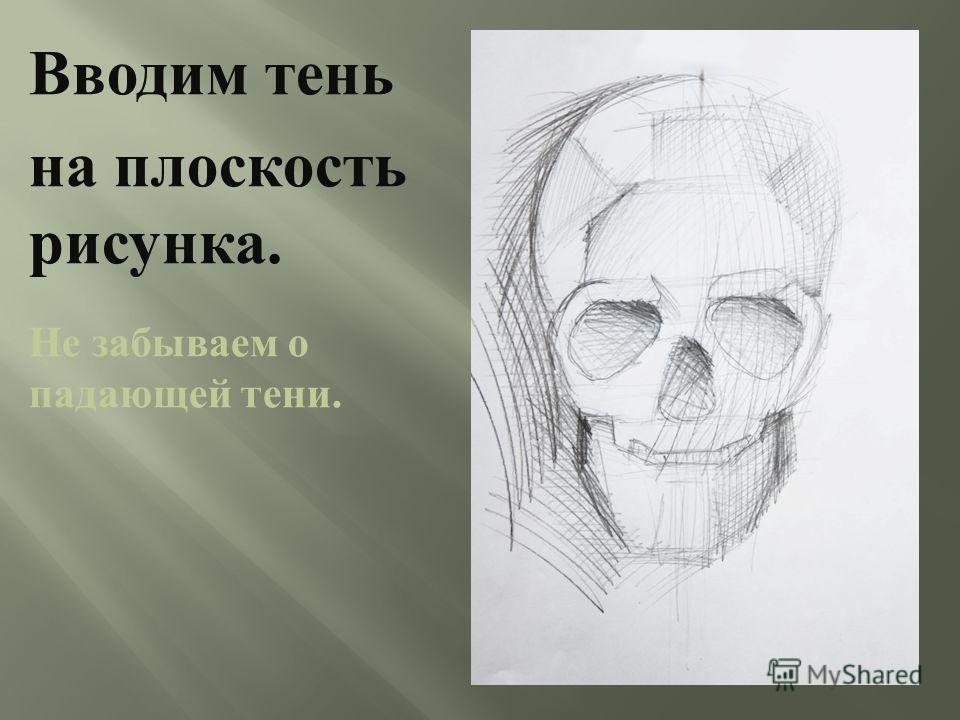 Добавляем в тональное решение рисунка полутени. Уточняем Конструкцию и построение черепа.