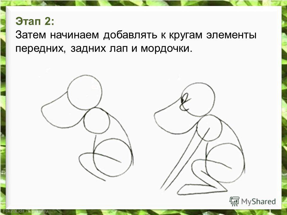 FokinaLida.75@mail.ru Этап 2: Затем начинаем добавлять к кругам элементы передних, задних лап и мордочки.