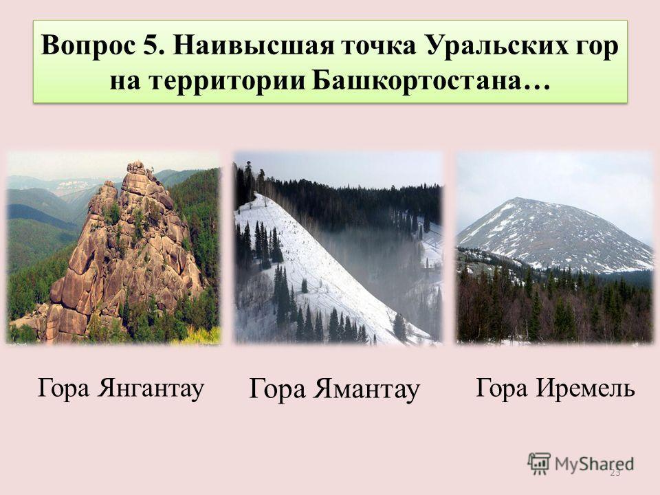Вопрос 5. Наивысшая точка Уральских гор на территории Башкортостана… Гора Иремель Гора Ямантау Гора Янгантау 23