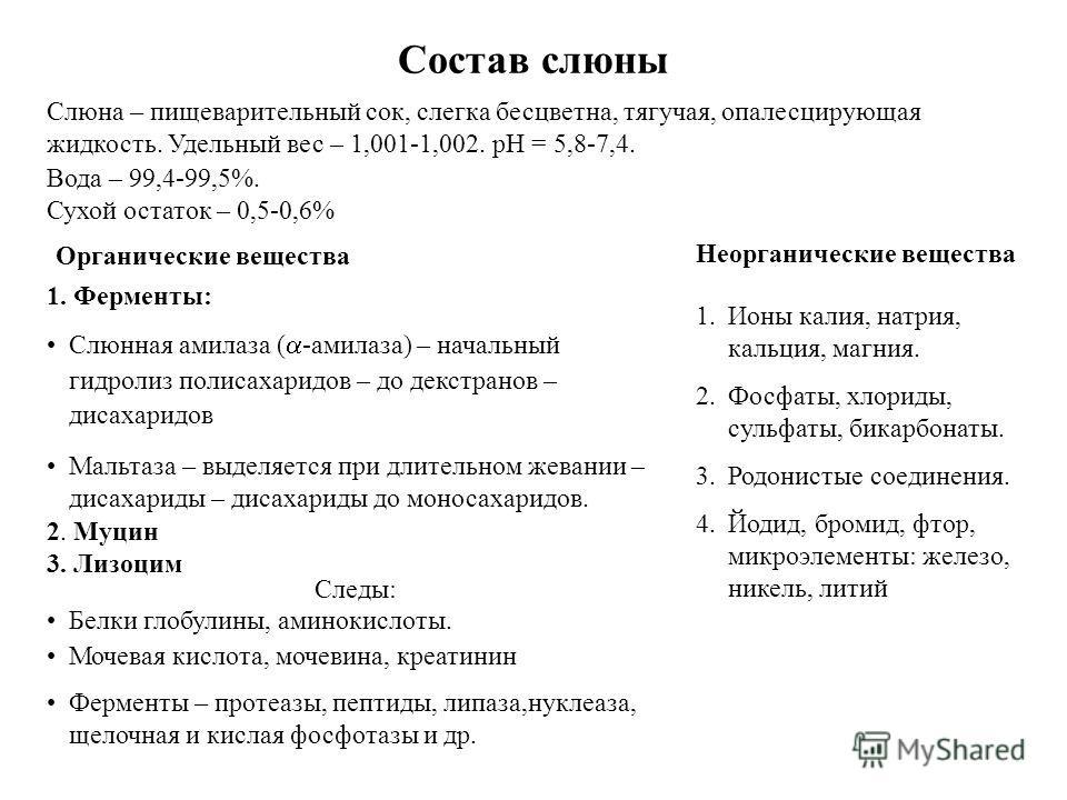Состав слюны Слюна – пищеварительный сок, слегка бесцветна, тягучая, опалесцирующая жидкость. Удельный вес – 1,001-1,002. рН = 5,8-7,4. Вода – 99,4-99,5%. Сухой остаток – 0,5-0,6% 1. Ферменты: Слюнная амилаза ( -амилаза) – начальный гидролиз полисаха