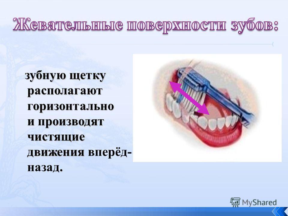 зубную щетку располагают горизонтально и производят чистящие движения. зубную щетку располагают горизонтально и производят чистящие движения вперёд- назад.