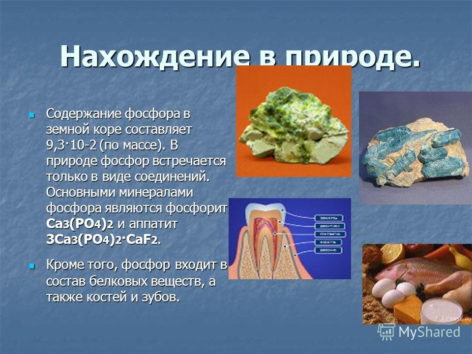 Нахождение в природе. Нахождение в природе. Содержание фосфора в земной коре составляет 9,3·10-2 (по массе). В природе фосфор встречается только в виде соединений. Основными минералами фосфора являются фосфорит Ca 3 (PO 4 ) 2 и аппатит 3Ca 3 (PO 4 )