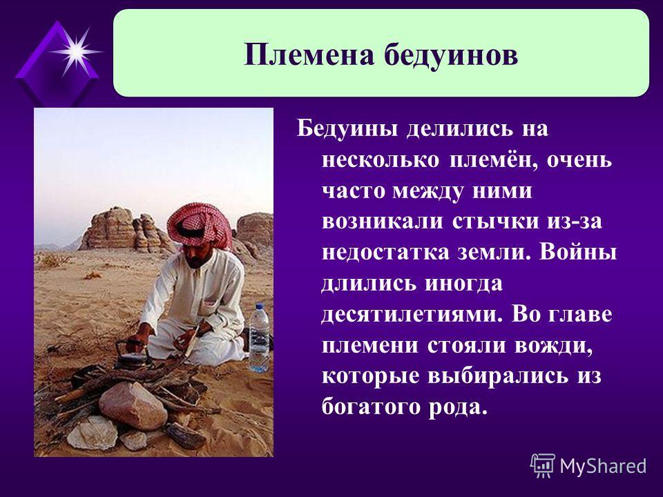 Бедуины делились на несколько племён, очень часто между ними возникали стычки из-за недостатка земли. Войны длились иногда десятилетиями. Во главе племени стояли вожди, которые выбирались из богатого рода. Племена бедуинов