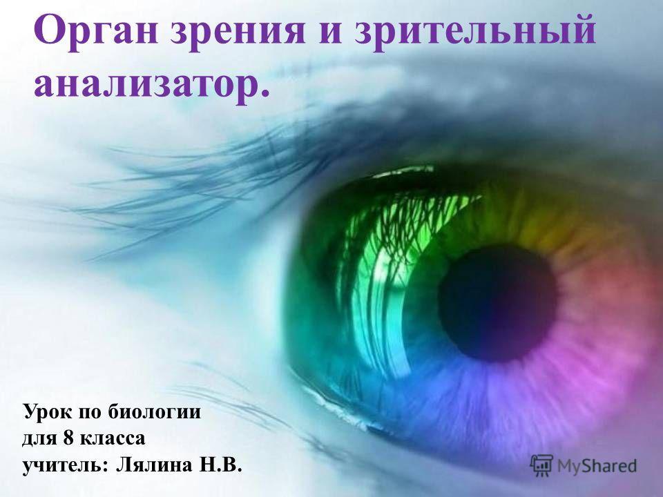 Орган зрения и зрительный анализатор. Урок по биологии для 8 класса учитель: Лялина Н.В.