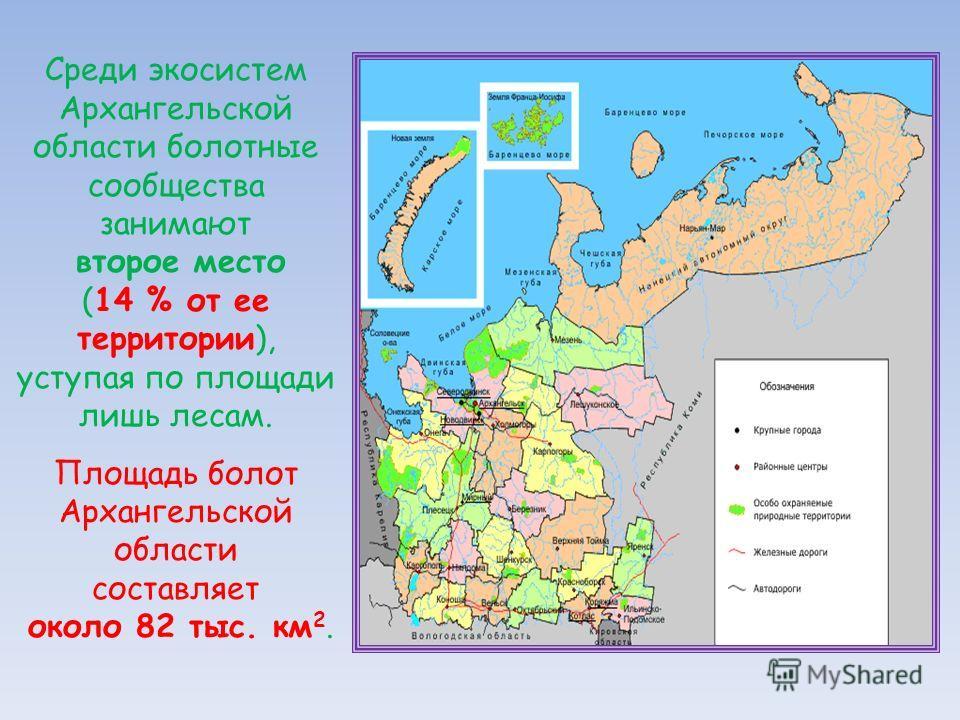 Среди экосистем Архангельской области болотные сообщества занимают второе место (14 % от ее территории), уступая по площади лишь лесам. Площадь болот Архангельской области составляет около 82 тыс. км 2.