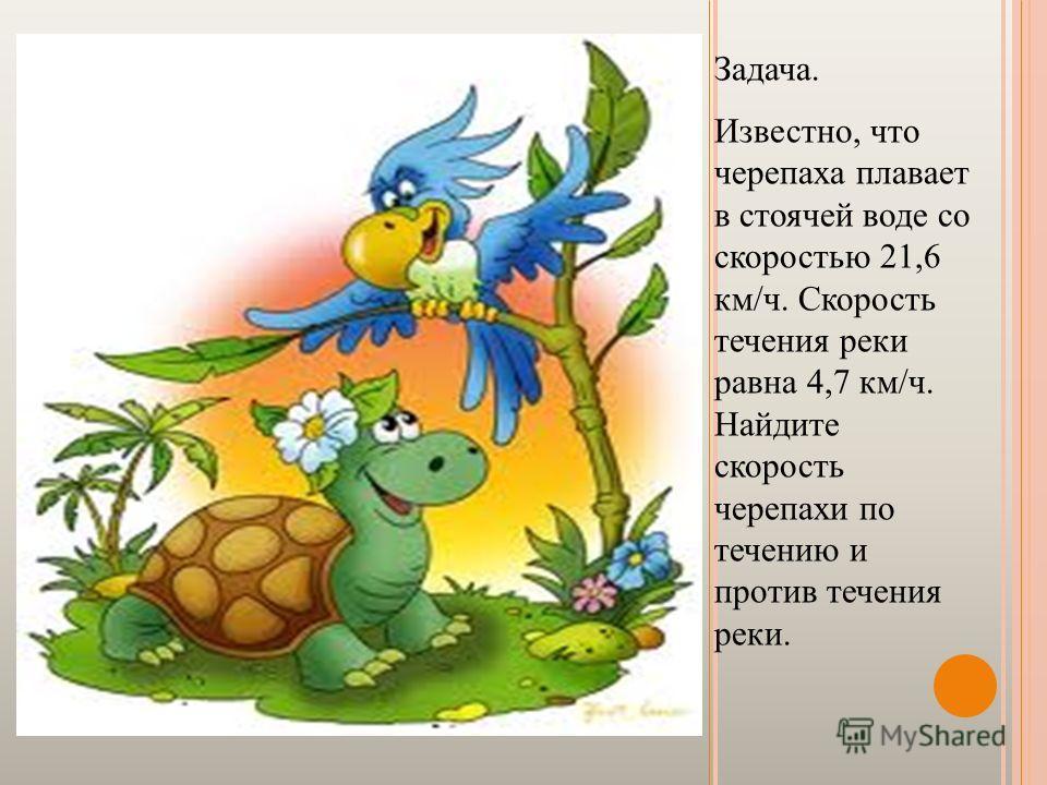 Задача. Известно, что черепаха плавает в стоячей воде со скоростью 21,6 км/ч. Скорость течения реки равна 4,7 км/ч. Найдите скорость черепахи по течению и против течения реки.