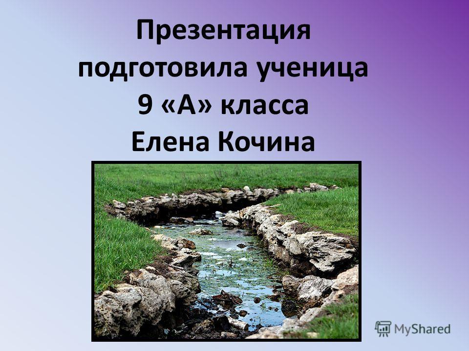 Презентация подготовила ученица 9 «А» класса Елена Кочина
