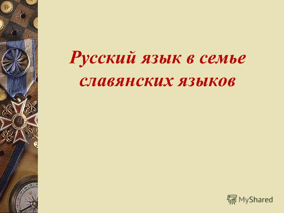 Русский язык в семье славянских языков реферат 8614