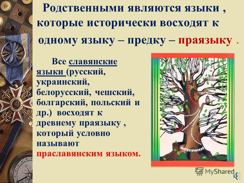 Родственными являются языки, которые исторически восходят к одному языку – предку – праязыку. Все славянские языки (русский, украинский, белорусский, чешский, болгарский, польский и др.) восходят к древнему праязыку, который условно называют праславя