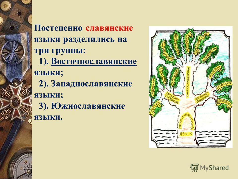 Постепенно славянские языки разделились на три группы: 1). Восточнославянские языки; 2). Западнославянские языки; 3). Южнославянские языки.