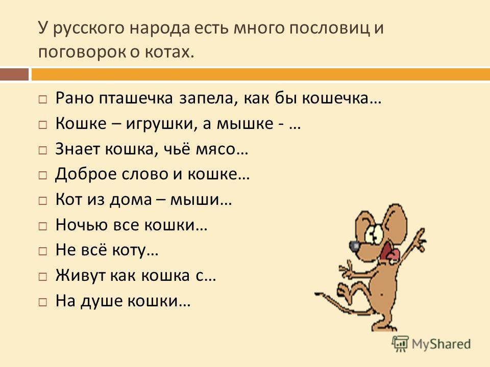 У русского народа есть много пословиц и поговорок о котах. Рано пташечка запела, как бы кошечка … Кошке – игрушки, а мышке - … Знает кошка, чьё мясо … Доброе слово и кошке … Кот из дома – мыши … Ночью все кошки … Не всё коту … Живут как кошка с … На