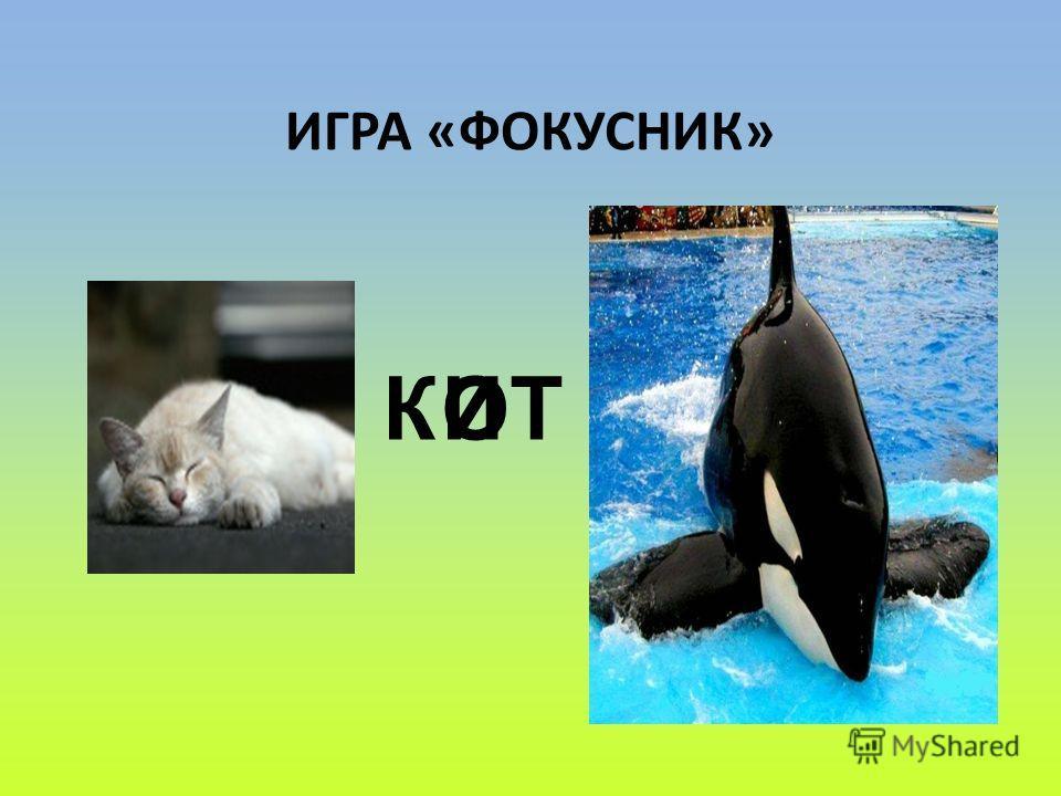 ИГРА «ФОКУСНИК» К ТОИ