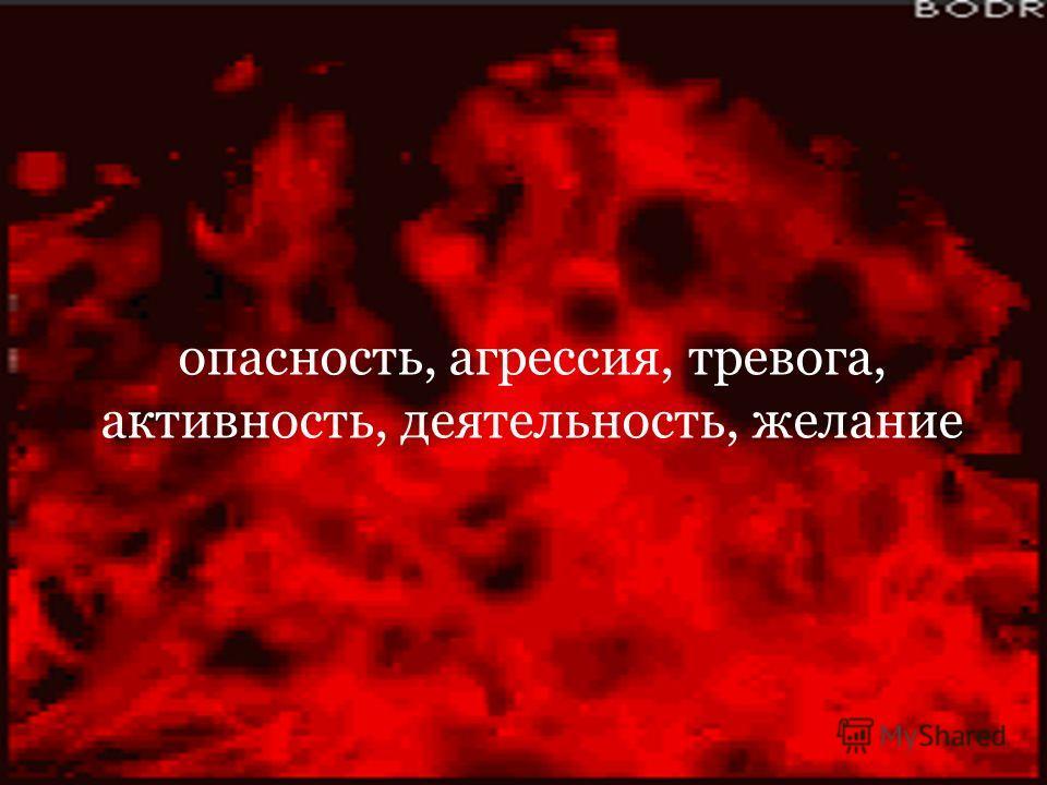 опасность, агрессия, тревога, активность, деятельность, желание