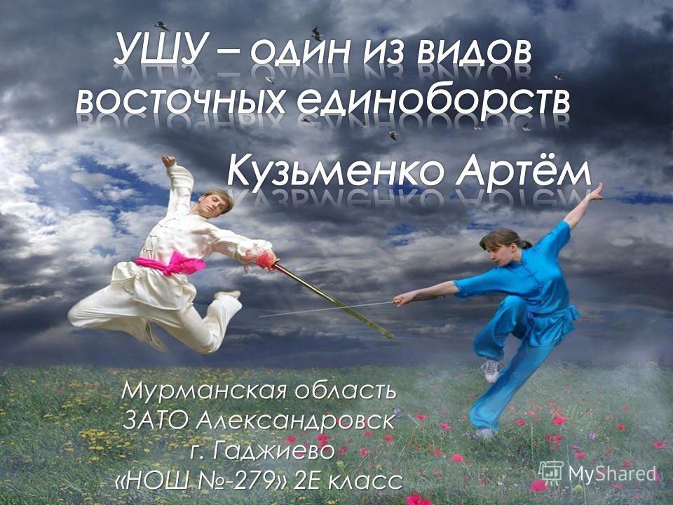 Мурманская область ЗАТО Александровск г. Гаджиево г. Гаджиево «НОШ -279» 2Е класс