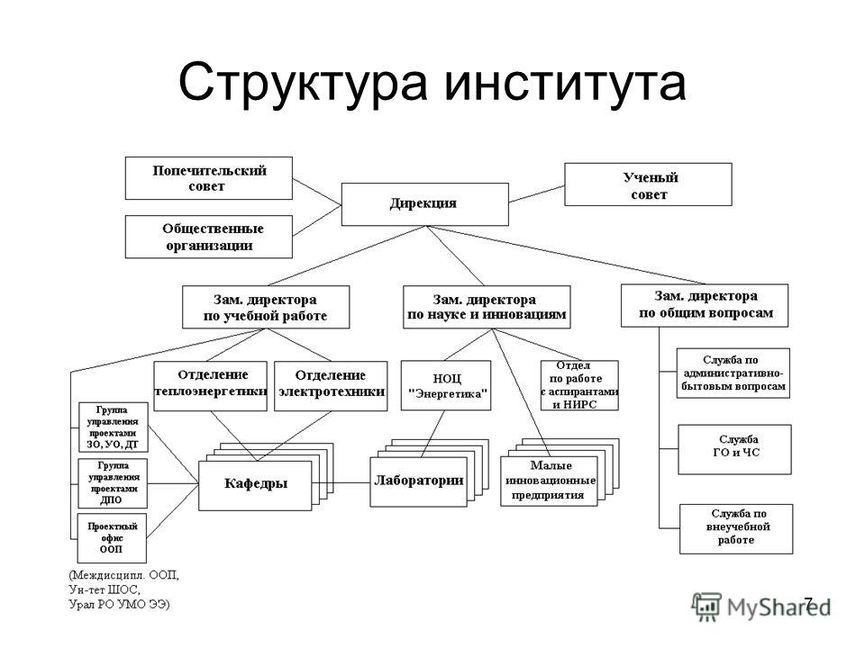 7 Структура института