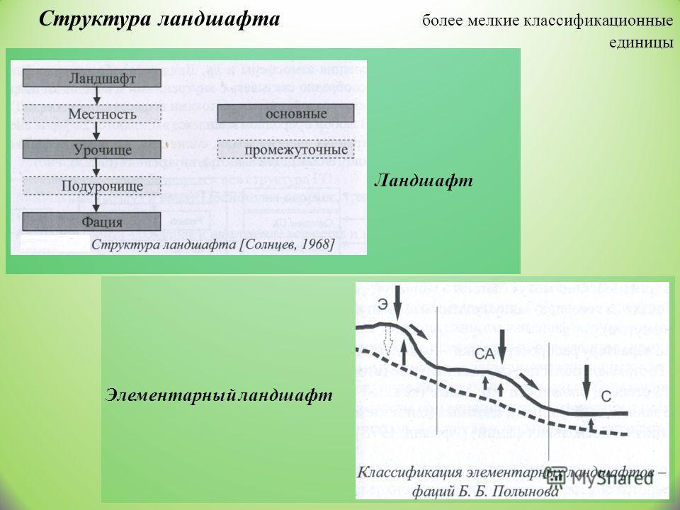 Структура ландшафта более мелкие классификационные единицы Ландшафт Элементарный ландшафт