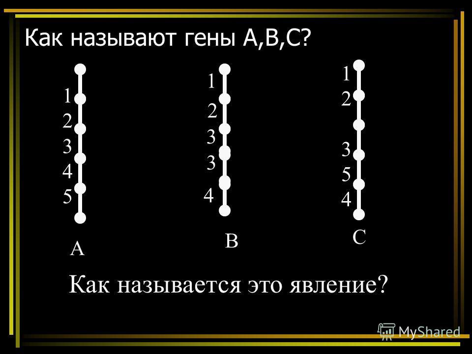 Как называют гены А,В,С? А В С 1234512345 1235412354 1 2 3 3 4 Как называется это явление?