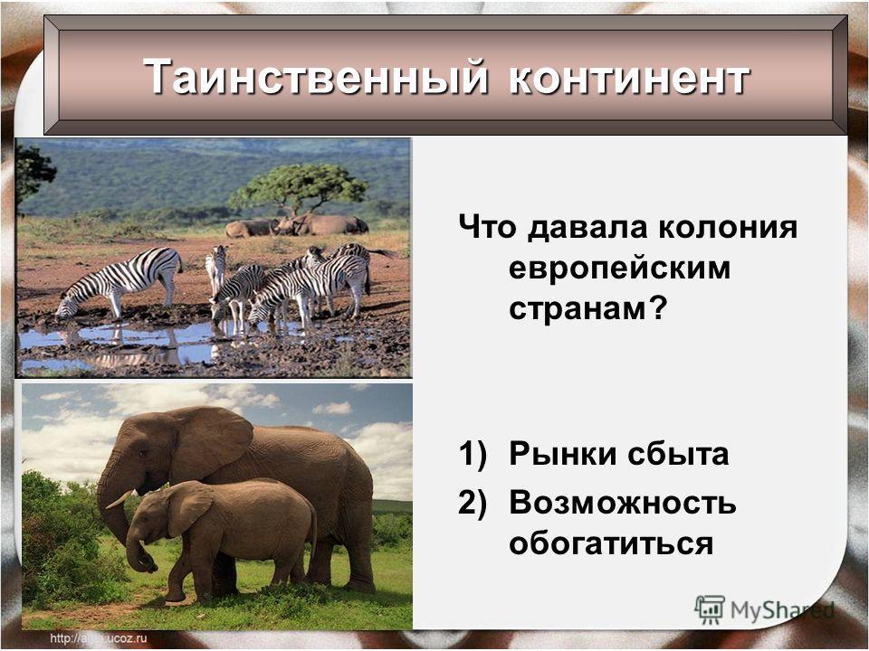 Что давала колония европейским странам? 1)Рынки сбыта 2)Возможность обогатиться Таинственный континент
