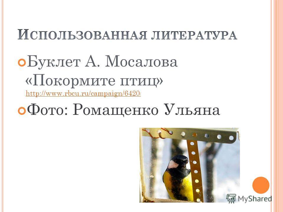 Буклет А. Мосалова «Покормите птиц» http://www.rbcu.ru/campaign/6420 / http://www.rbcu.ru/campaign/6420 / Фото: Ромащенко Ульяна