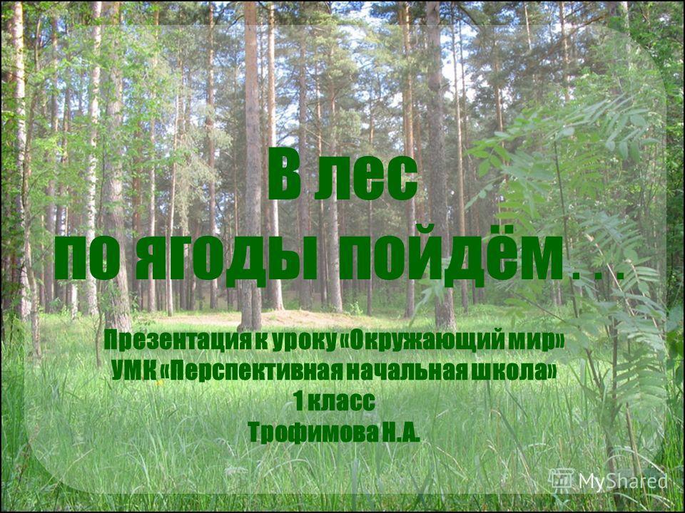 В лес по ягоды пойдём … Презентация к уроку «Окружающий мир» УМК «Перспективная начальная школа» 1 класс Трофимова Н.А.