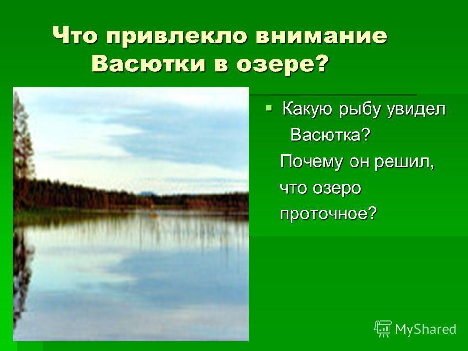 Что привлекло внимание Васютки в озере? Что привлекло внимание Васютки в озере? Какую рыбу увидел Какую рыбу увидел Васютка? Васютка? Почему он решил, Почему он решил, что озеро что озеро проточное? проточное?