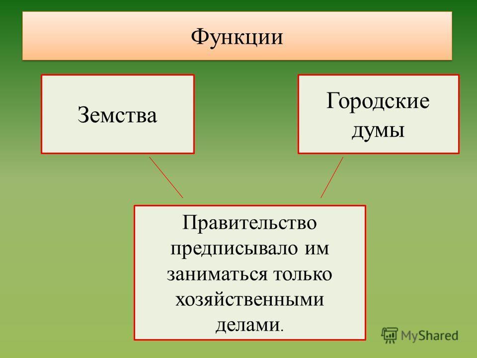 Земства Городские думы Правительство предписывало им заниматься только хозяйственными делами. Функции