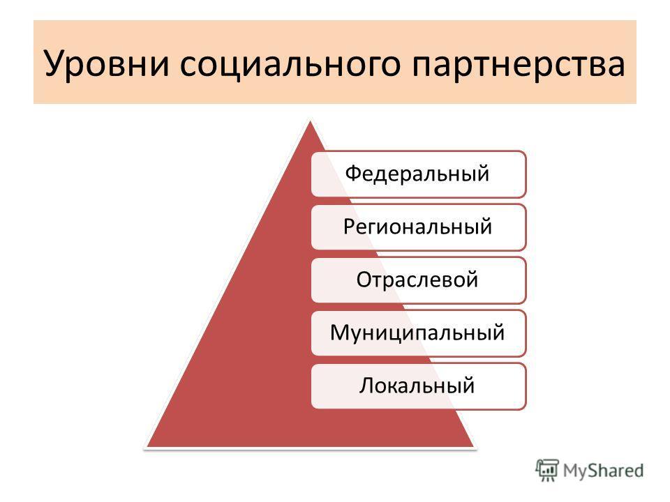 Уровни социального партнерства ФедеральныйРегиональныйОтраслевойМуниципальныйЛокальный