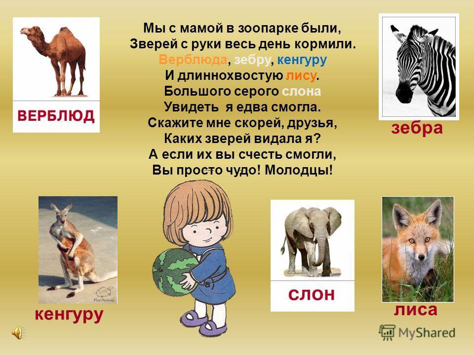 ПетяКатяЛенаВова