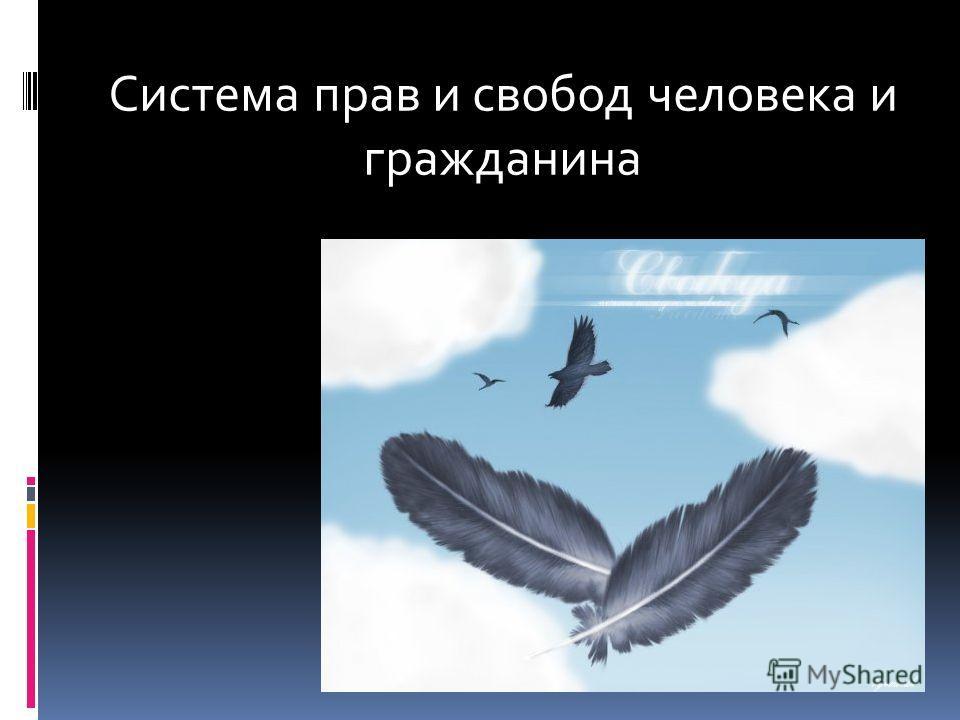Система прав и свобод человека и гражданина