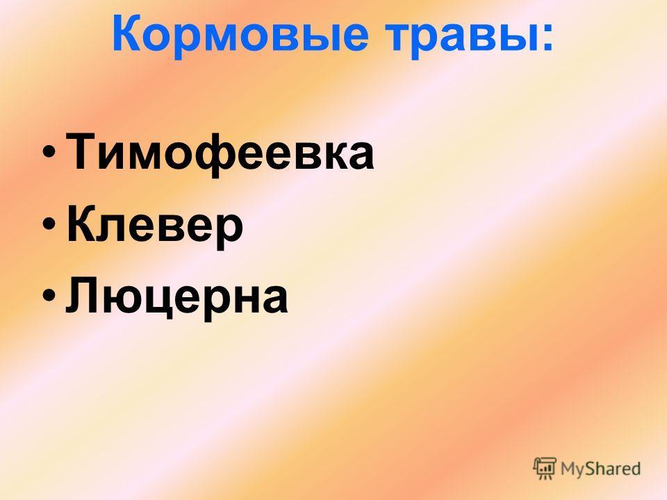 Кормовые травы: Тимофеевка Клевер Люцерна