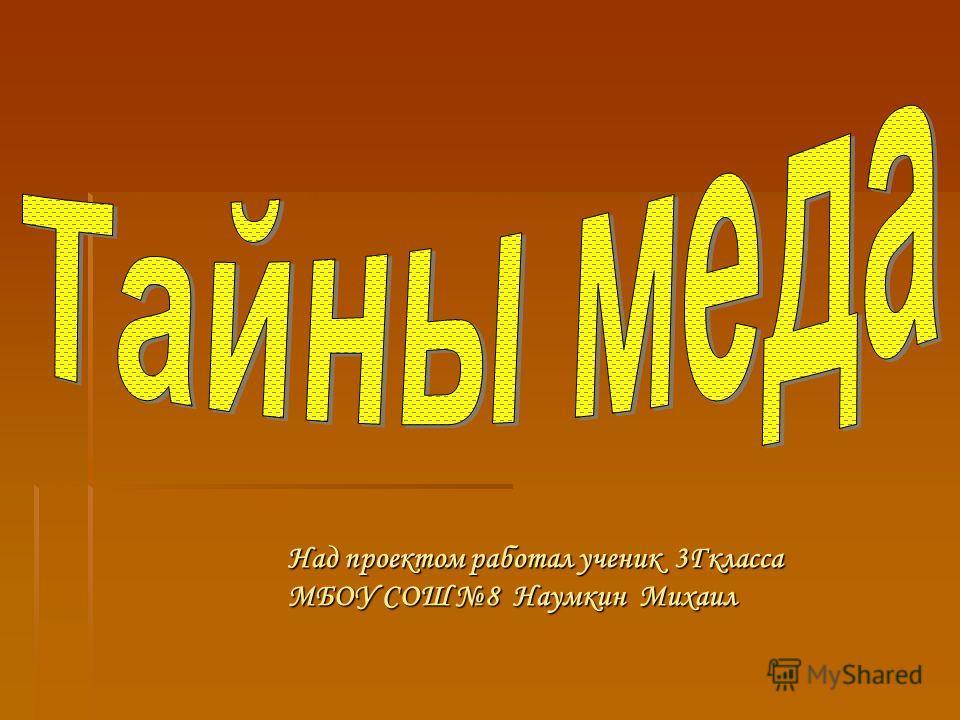 Над проектом работал ученик 3Гкласса МБОУ СОШ 8 Наумкин Михаил