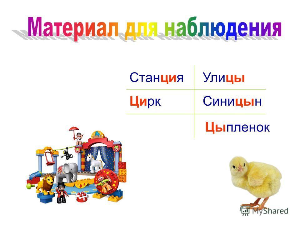 Станция Цирк Улицы Синицын Цыпленок