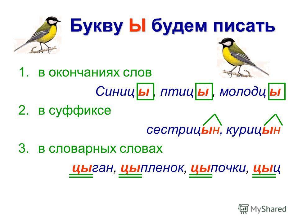 Букву Ы будем писать 1.в окончаниях слов Синиц ы, птиц ы, молодц ы 2.в суффиксе сестрицын, курицын 3.в словарных словах цыган, цыпленок, цыпочки, цыц