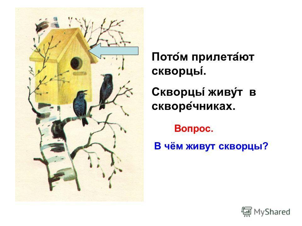 Весной из тёплых стран возвращаются перелётные птицы. Первыми прилетают грачи. Какие птицы прилетают (возвращаются) весной? Вопрос. Вопрос. Какие птицы прилетают первыми?
