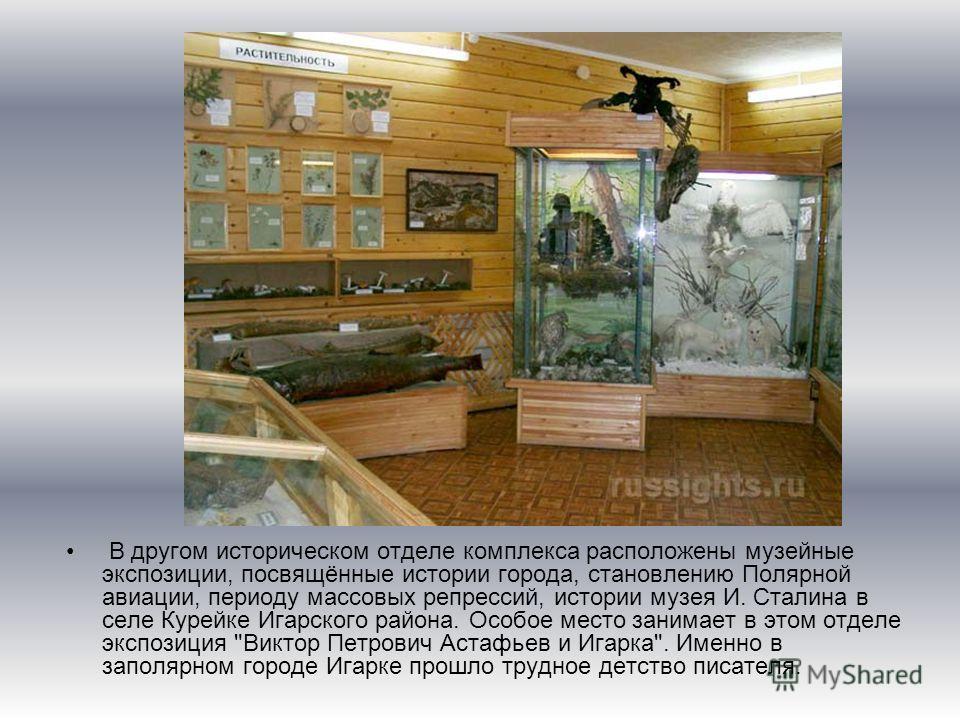 В другом историческом отделе комплекса расположены музейные экспозиции, посвящённые истории города, становлению Полярной авиации, периоду массовых репрессий, истории музея И. Сталина в селе Курейке Игарского района. Особое место занимает в этом отдел