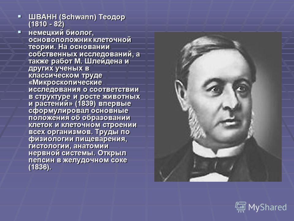 ШВАНН (Schwann) Теодор (1810 - 82) ШВАНН (Schwann) Теодор (1810 - 82) немецкий биолог, основоположник клеточной теории. На основании собственных исследований, а также работ М. Шлейдена и других ученых в классическом труде «Микроскопические исследован