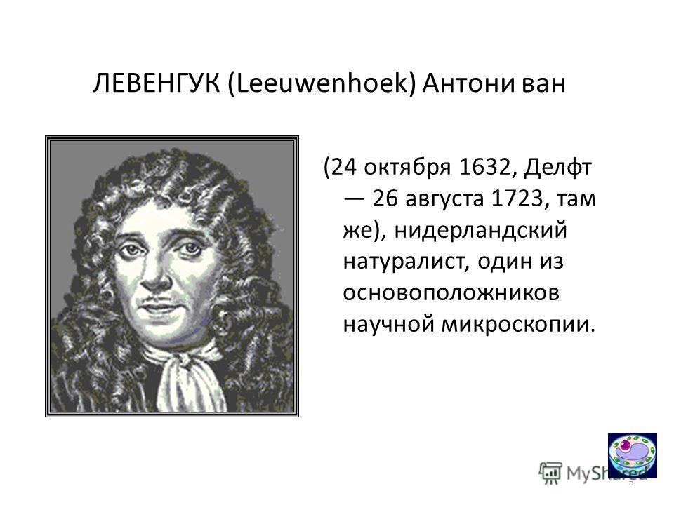5 ЛЕВЕНГУК (Leeuwenhoek) Антони ван (24 октября 1632, Делфт 26 августа 1723, там же), нидерландский натуралист, один из основоположников научной микроскопии.