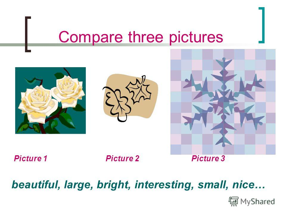 Compare three pictures Picture 1 Picture 2 Picture 3 beautiful, large, bright, interesting, small, nice…