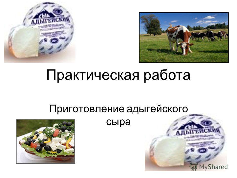 Практическая работа Приготовление адыгейского сыра