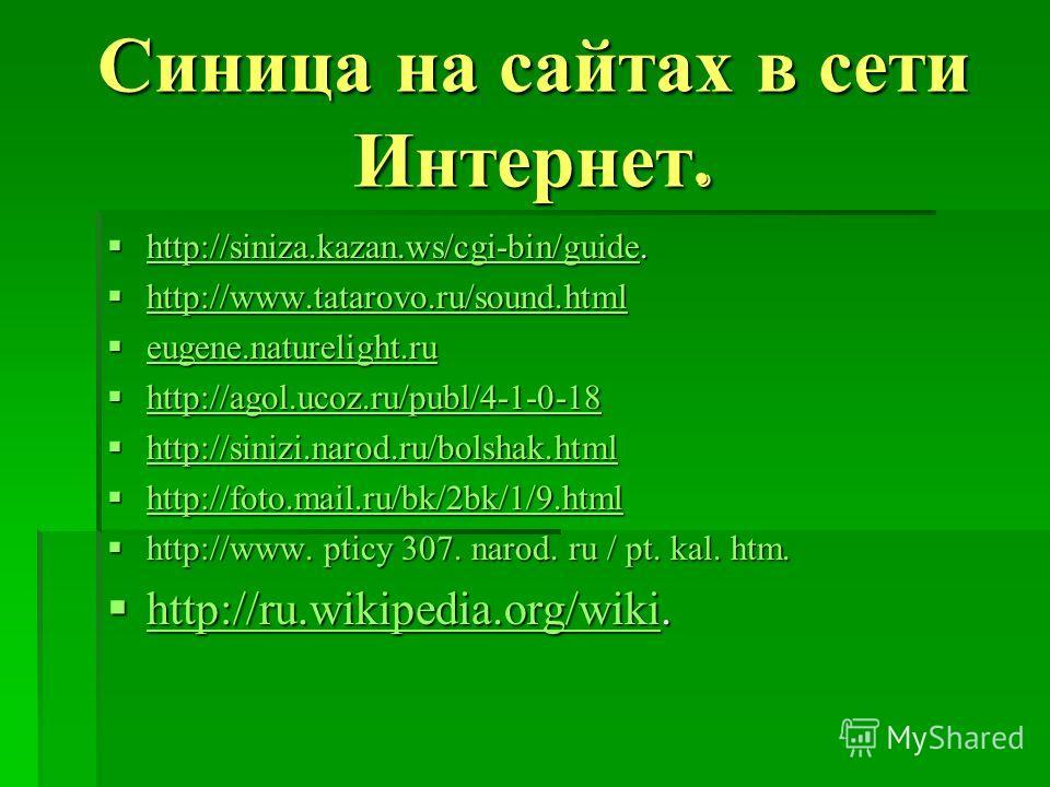 Синица на сайтах в сети Интернет. http://siniza.kazan.ws/cgi-bin/guide. http://siniza.kazan.ws/cgi-bin/guide. http://siniza.kazan.ws/cgi-bin/guide http://www.tatarovo.ru/sound.html http://www.tatarovo.ru/sound.html http://www.tatarovo.ru/sound.html e
