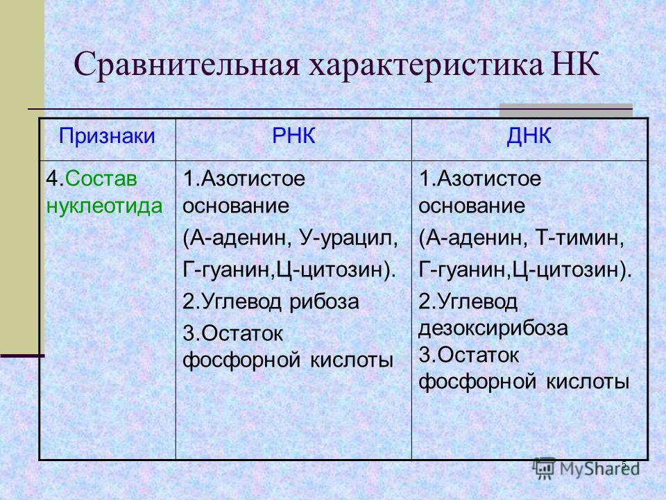 4 Сравнительная характеристика НК ПризнакиРНКДНК 1.Нахожден ие в клетке Ядро, митохондрии, рибосомы, хлоропласты. Ядро, митохондрии, хлоропласты. 2.Нахожден ие в ядре ЯдрышкоХромосомы 3.Состав нуклеотида Одинарная полинуклеотидная цепочка, кроме виру