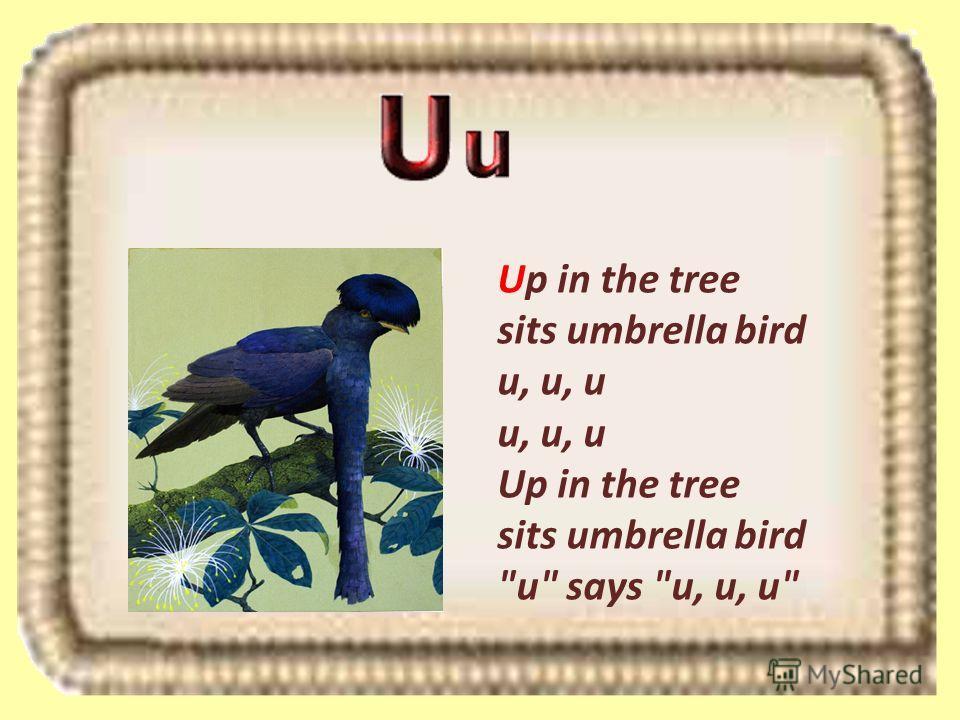 Up in the tree sits umbrella bird u, u, u u, u, u Up in the tree sits umbrella bird u says u, u, u