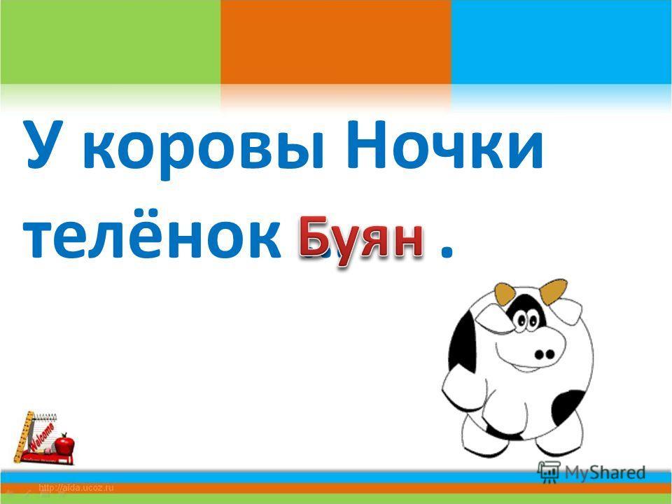 У коровы Ночки телёнок ….