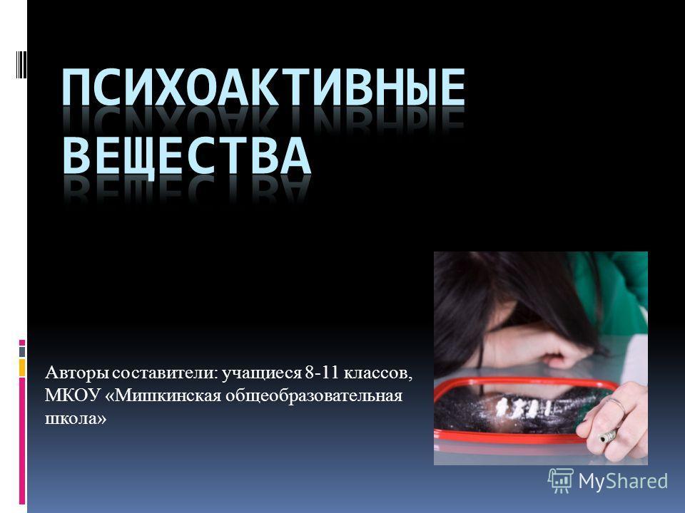 Авторы составители: учащиеся 8-11 классов, МКОУ «Мишкинская общеобразовательная школа»
