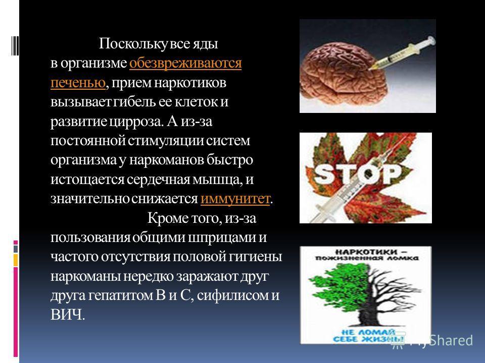 Поскольку все яды в организме обезвреживаются печенью, прием наркотиков вызывает гибель ее клеток и развитие цирроза. А из-за постоянной стимуляции систем организма у наркоманов быстро истощается сердечная мышца, и значительно снижается иммунитет. Кр