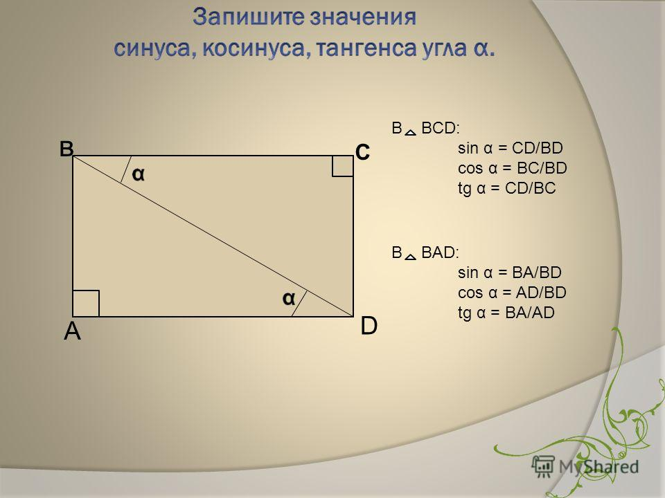 в С А D В BCD: sin α = CD/BD cos α = BC/BD tg α = CD/BC В BАD: sin α = BA/BD cos α = AD/BD tg α = BA/AD