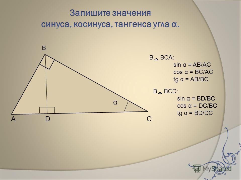 α А D С В BCА: sin α = AB/AC cos α = BC/AC tg α = AB/BC В BCD: sin α = BD/BC cos α = DC/BC tg α = BD/DC В