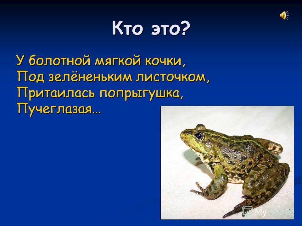 Кто это? У болотной мягкой кочки, Под зелёненьким листочком, Притаилась попрыгушка, Пучеглазая…
